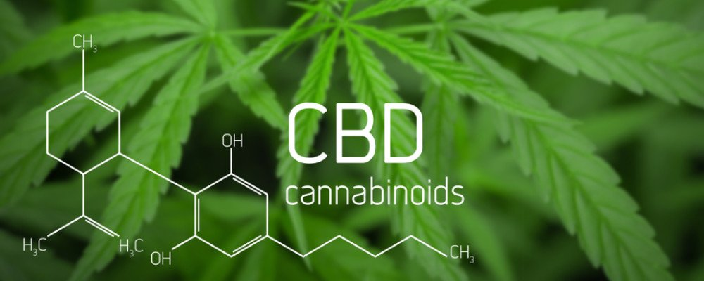 CBD molecule overlayed on cannabis leaf