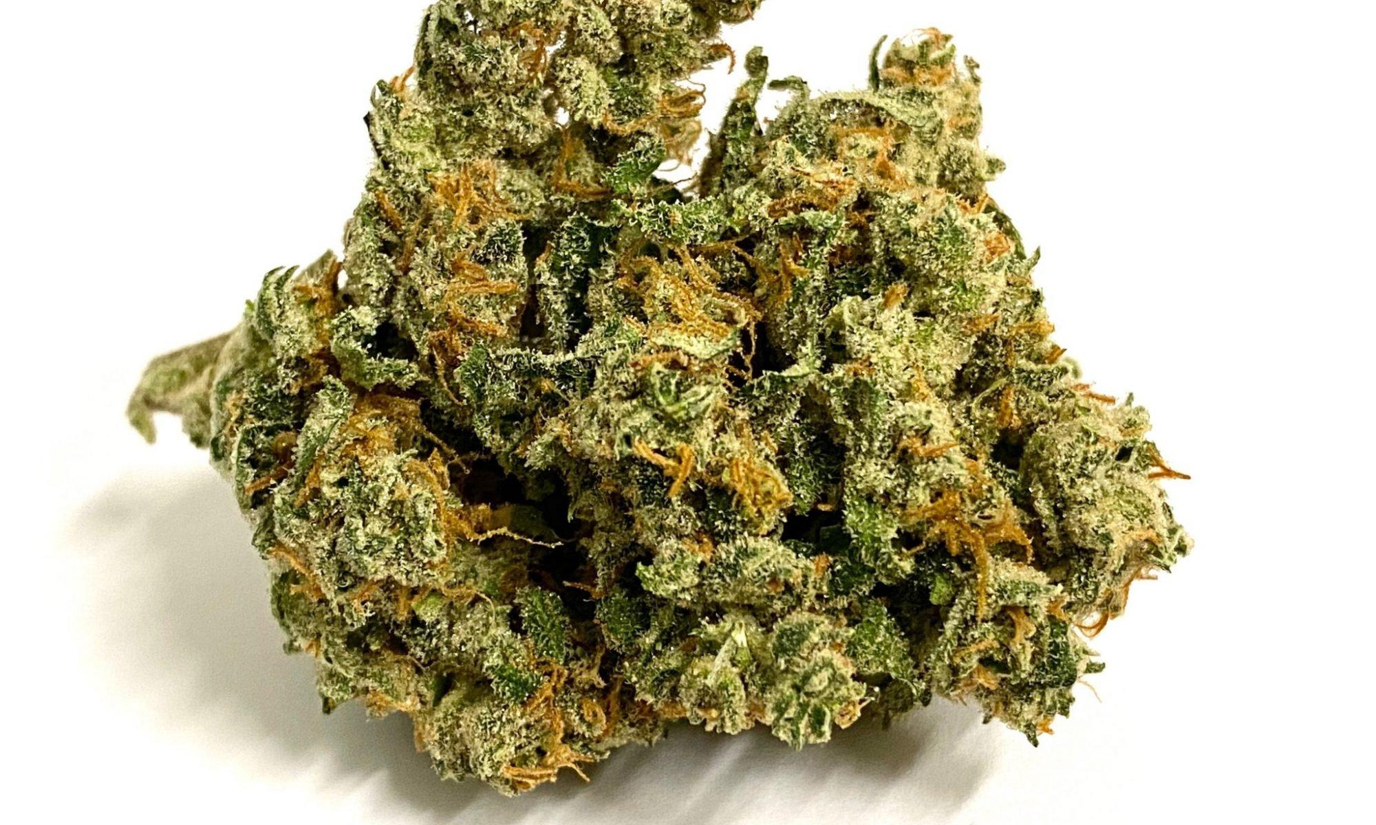 Durban Kush strain The Lodge Cannabis (1)