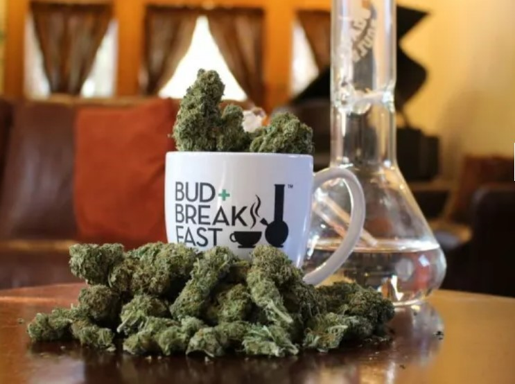 This image has an empty alt attribute; its file name is Bud-and-Breakfast-–-The-Adagio.jpg