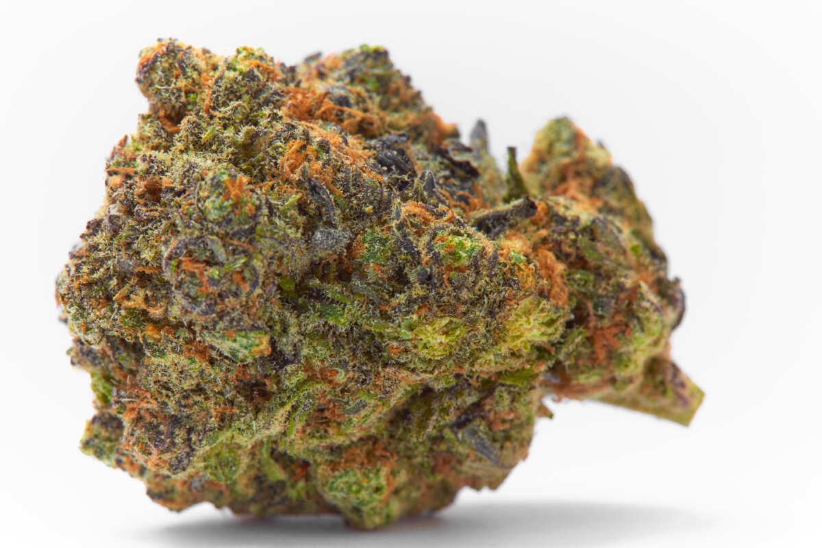Fruit Punch cannabis flower