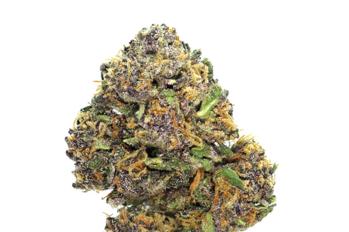 Hindu Kush Cannabis Flower