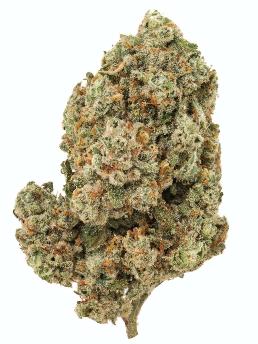 Jack Frost cannabis bud
