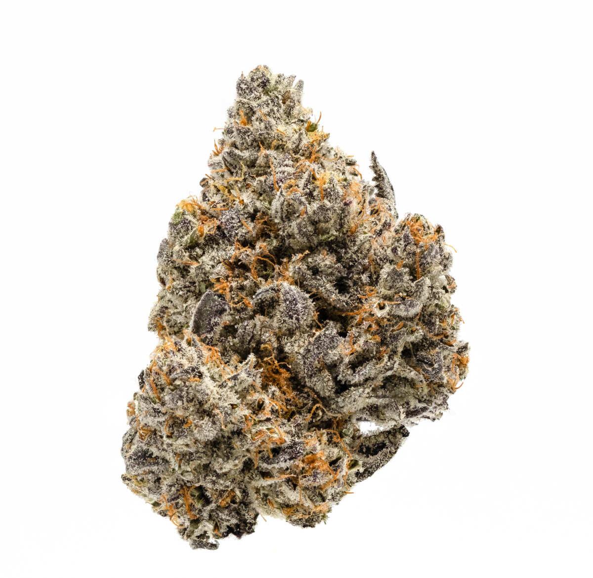 White Buffalo Cannabis Bud On White Background